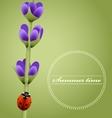 Sprig of lavender cute ladybug Summer season vector image vector image