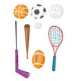 Variety of sports equipment vector image