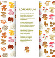 flat poster or banner template with mushrooms vector image vector image