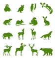 Forest animals collection vector image vector image