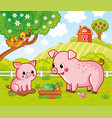 with pigs on a farm in cartoon vector image vector image