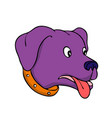 bewildered labrador retriever drawing vector image vector image