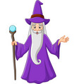 cartoon old wizard holding magic stick vector image