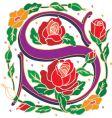 rosette letter S vector image