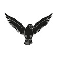 black bird silhouette vector image