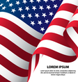 The USA Waving Flag Background vector image