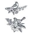 bouquet doodle hand drawn magnolia vector image