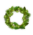 exotic tropical and jungle plants foliage wreath vector image vector image