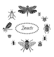 hand drawn insect set in entangle style black vector image