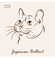Japanese Bobtail vector image vector image