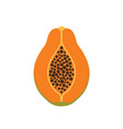 papaya fruit icon symbol eps10 vector image