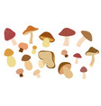 set mushrooms in flat style and isolated on vector image vector image