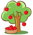 apple tree on white background vector image