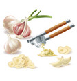 clipart with garlic cloves and metal press vector image vector image