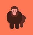 flat icon stylish background cartoon monkey vector image vector image