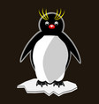 little funny pinguin standing on ice floe vector image vector image