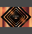 luxury black modern background with abstract vector image vector image