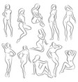 set female figures collection outlines of vector image vector image