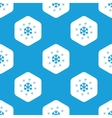 Snowflakes hexagon pattern vector image
