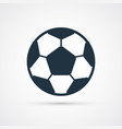 soccer football ball colored vector image vector image
