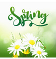 spring time on background with spring flowers vector image vector image