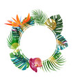 tropical plants cicle design template bird of vector image