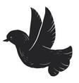 black dove on white background vector image