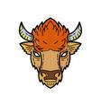 european bison mono line art vector image vector image