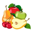 Set of fruits and berries vector image vector image
