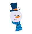 snowman christmas character winter hat scarf vector image