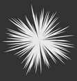 abstract star explosion vector image