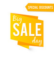 big sale label isolated on white vector image