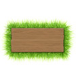 empty wooden sign with grass vector image