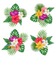 flowers bouquet tropical exotic plants bali vector image vector image