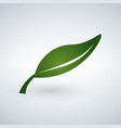 green leaf flat icon isolated vector image