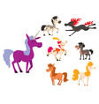 horse pony stallion breeds color farm vector image vector image