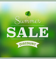 summer sale poster with blur vector image vector image