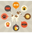 Visual infographics with cute dogs icons and vector image