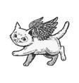 angel flying kitten color sketch engraving vector image vector image