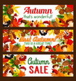 autumn sale offer banner with fall nature frame vector image vector image