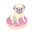 cute pug dog flat character with red tongue and vector image