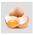 eggs with isolated background vector image vector image