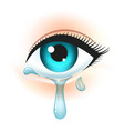 eye with tears vector image