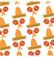 mexican hat and maracas instrument culture vector image