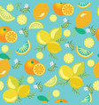 pattern with lemons flowers leaves and oranges vector image