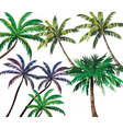 Set of Tropical Palm Trees vector image vector image