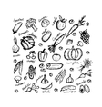 Vegetable sketch frame for your design vector image vector image