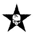 white skull on black star military symbol vector image