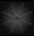 black spider and web cobweb vector image