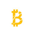 bitcoin icon graphic design template vector image vector image
